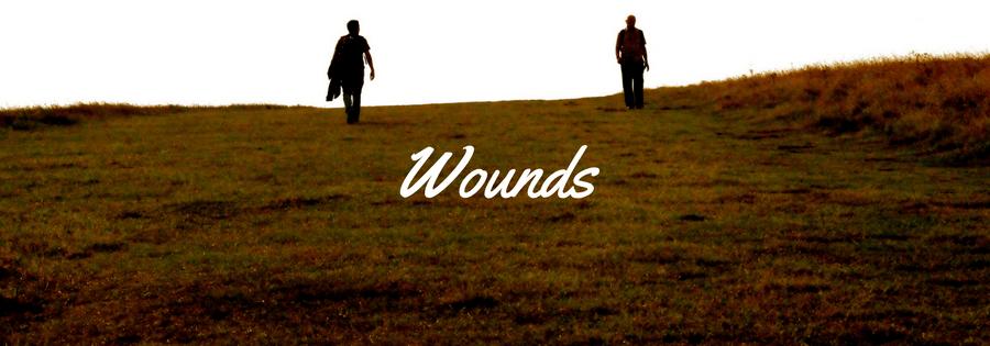 Wounds by Helen Sherwin